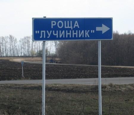 Указатель Роща Лучинник