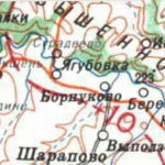 Село Борнуково карта