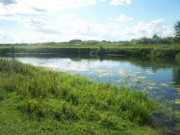 Река Пьяна в селе Камкино,Сергачский район,Нижегородская область