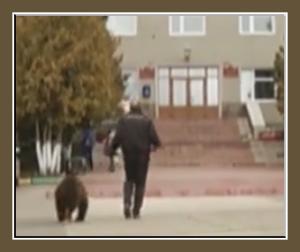 С медведем к главе администрации г.Сергач
