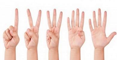 Сколько пальцев считаем