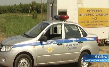 Контрольно-Ветеринарно-полицейский пост с.Уразовка