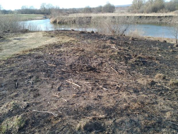 Село Шубино экологический проект