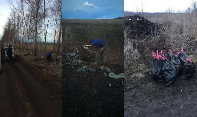 Село Шубино уборка в лесопасадках